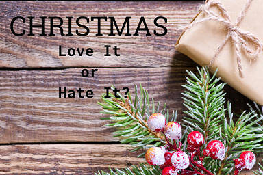 Christmas Love It or Hate It